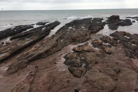 Dawlish-rocks